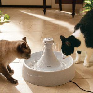 Питьевой фонтан Drinkwell® 360 из пластика